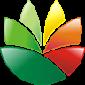 Logo设计软